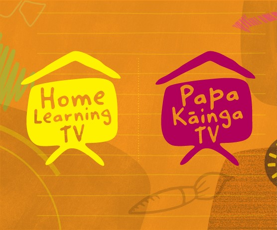 TV education channels